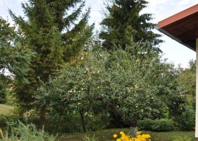 agroturystyka-pod-grusza-ladne-pole-679633